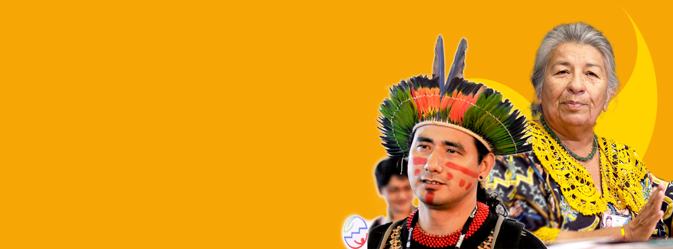 Vulnerable Indigenous Groups, United Nations